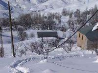Hakkari'de kopan elektrik telleri tehlike saçıyor