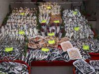 Havalar ısındı balık tezgahları doldu, fiyat düştü