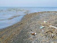 Van Gölü çöplük alanına dönüştü