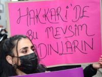 Kadın Cinayetlerini Durduracağız Platformu Hakkari'den seslendi